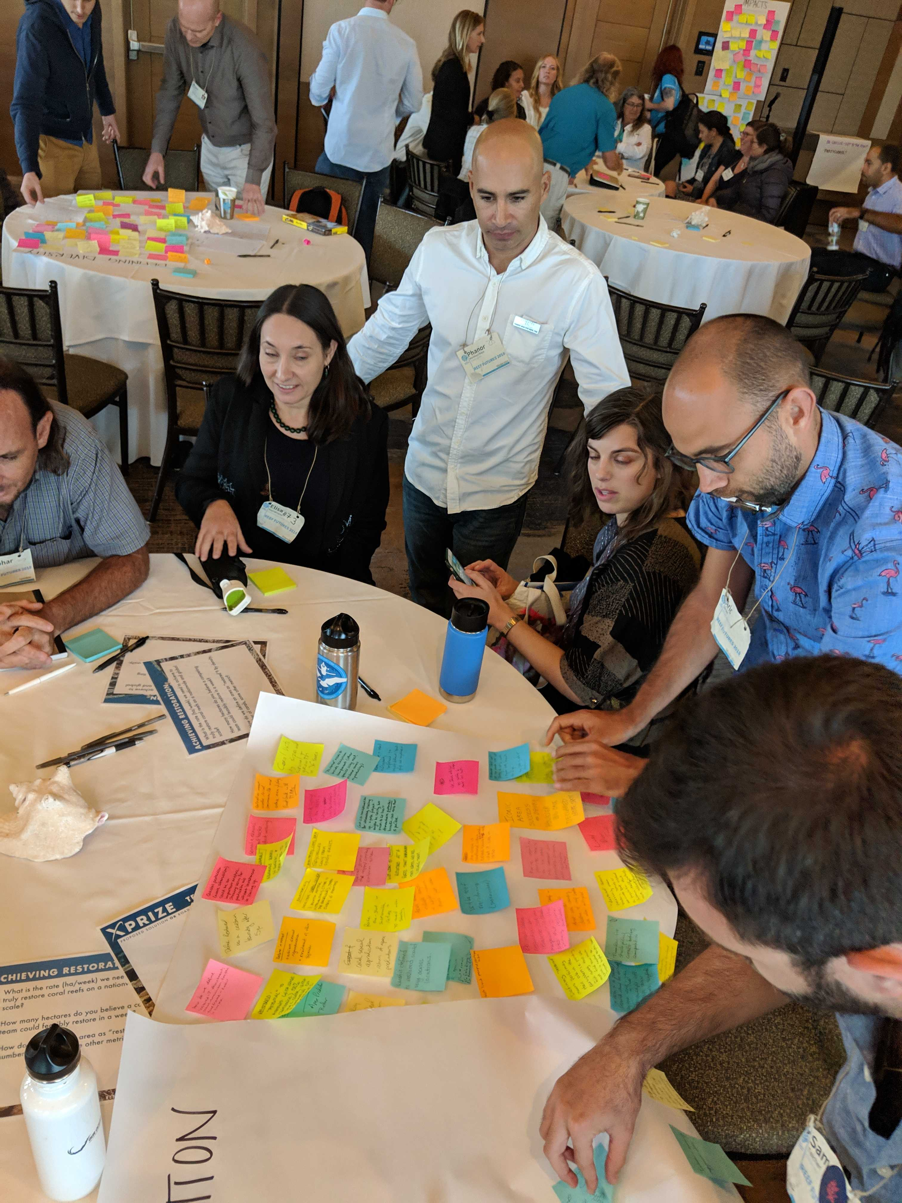Brainstorming Solutions for Coral Restoration Interventions © Coral Restoration Consortium_Reef Futures 2018
